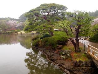 a pretty pond