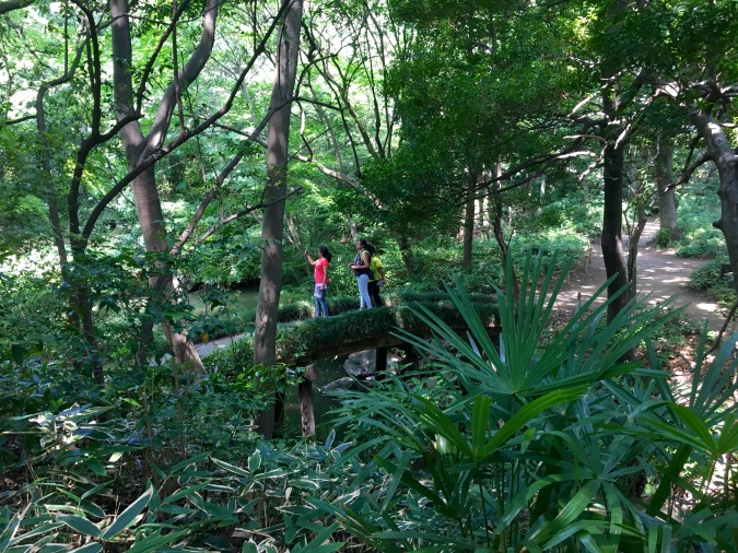 tropical forest at Rikugien Garden
