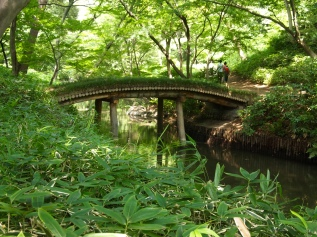 bridge at Rikugien Garden