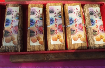 sweets for sale at Rikugien Garden