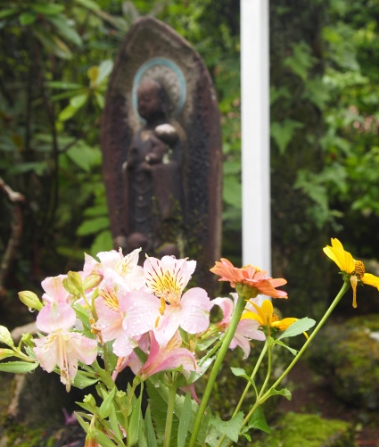 raindrops on flowers at Jokoji Temple
